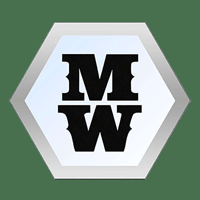 logo flat portfolio